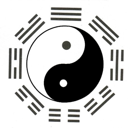 livre  u0026quot le yi king pratique u0026quot  ou livre des transformations